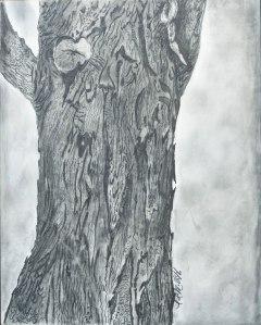 Raini's tree